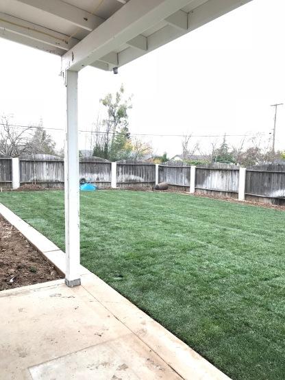 New lawn!